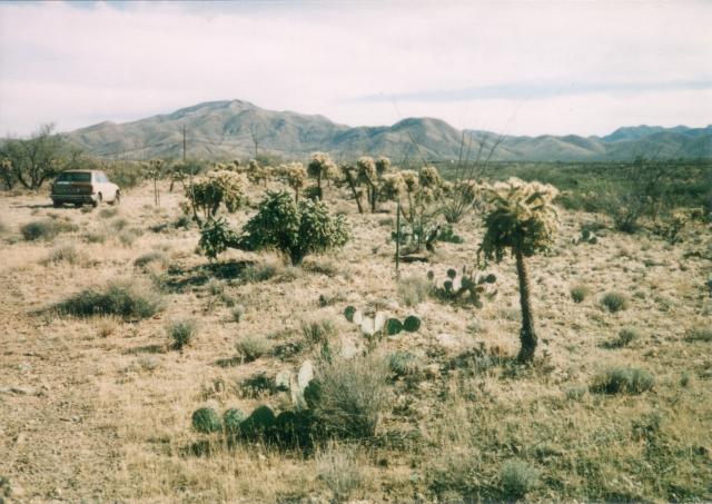 Looking south at Santa Rita Mountains